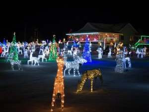 Leduc Country Lights